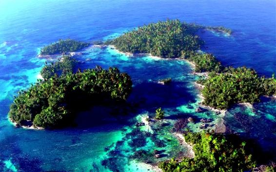 Fond d'écran Magnifiques îles vue aérienne, mer, palmiers