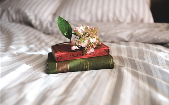 Wallpaper Books, flowers, bed, still life