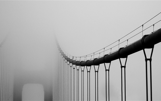 壁紙 霧の中の橋、霧
