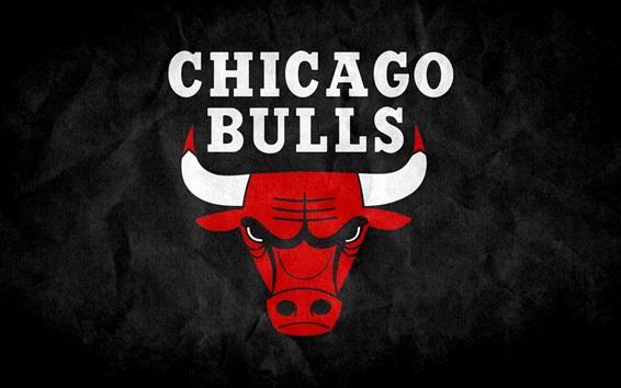 Обои Логотип Chicago Bulls