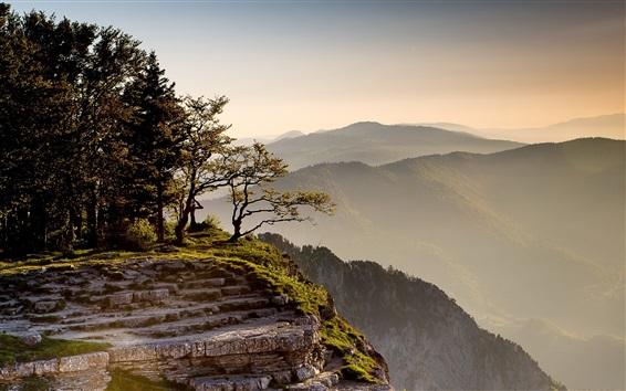 Wallpaper Cliff, mountains, trees, grass, rocks, morning