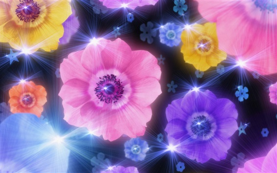 배경 화면 다채로운 말미잘 꽃