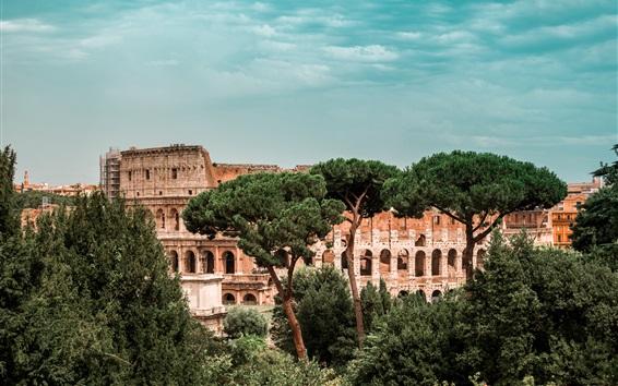Fond d'écran Colisée, Italie, arbres, ruines du monde