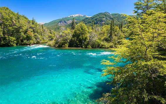 Fond d'écran Parc national de Conguillio, Chili, montagnes, arbres, rivière