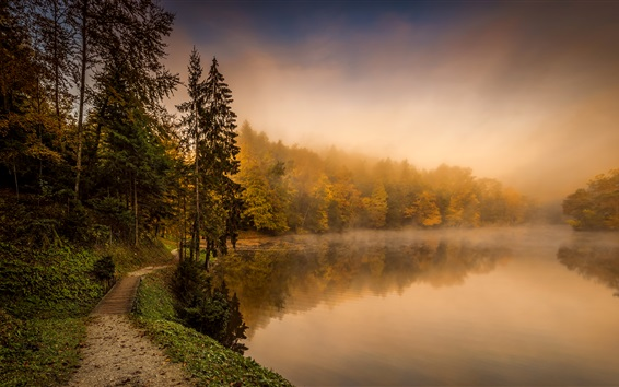 Wallpaper Croatia, autumn, trees, path, lake, fog