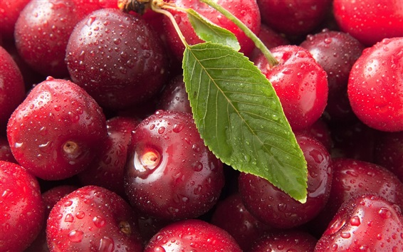 Delicious cherries, red, water drops, green leaf Wallpaper Preview