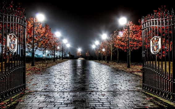 Wallpaper England, night, trees, road, gate, lights