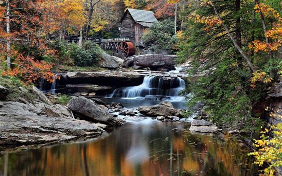 Fondos de pantalla Bosque, choza, arroyo, árboles, molino, piedras, otoño