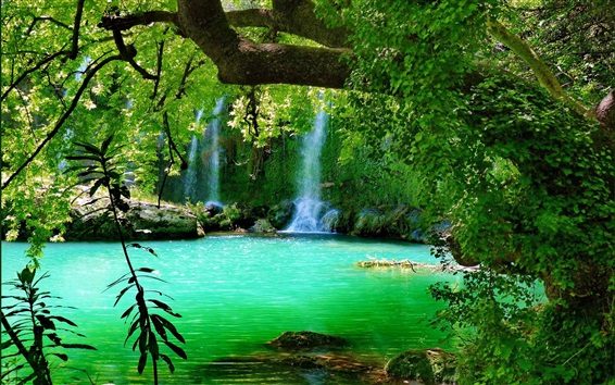 Wallpaper Forest, lake, green, trees, waterfall