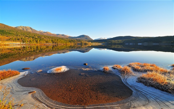 Wallpaper Lake, ice, clear water, frost, grass
