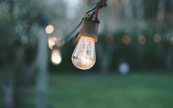 Обои Лампа, электричество, боке