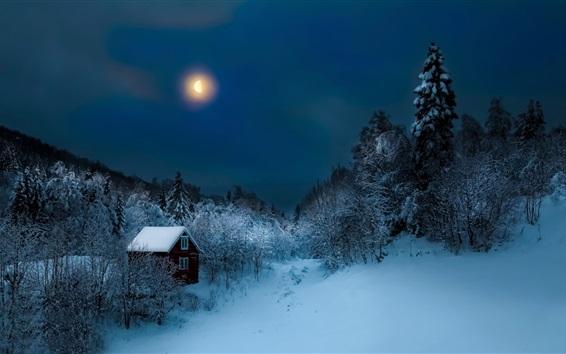 Wallpaper Night, trees, snow, winter, hut, moon