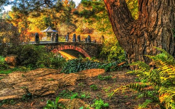 Fond d'écran Parc, arbres, pont, herbe