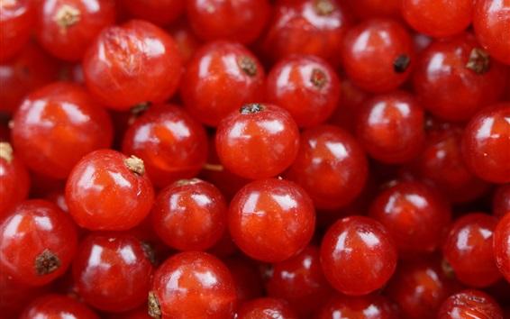 Wallpaper Red currant, berries