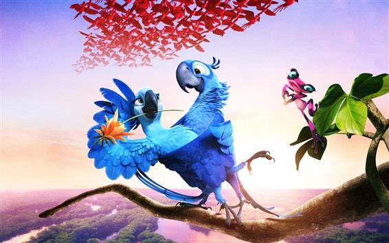 Fondos de pantalla Película de Río 2, loros de plumas azules