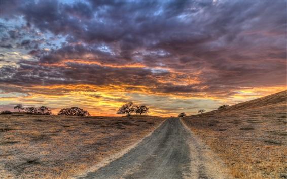 Fond d'écran Route, herbe, arbres, ciel rouge, nuages, coucher de soleil