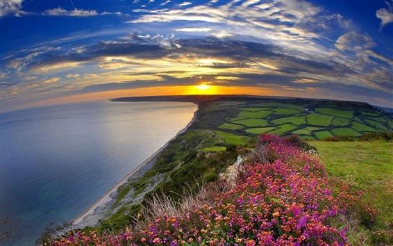 Обои Закат, море, берег, цветы, поля, облака