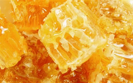 Wallpaper Sweet honey, honeycomb