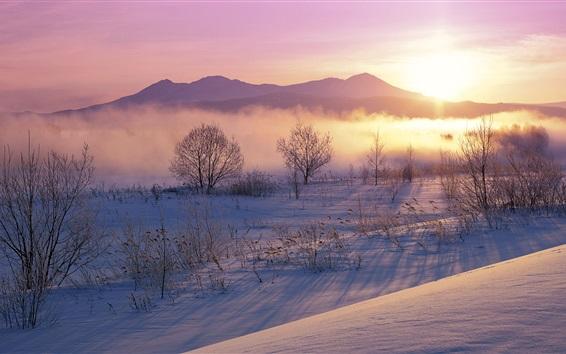 Fond d'écran Matin d'hiver, brouillard, montagne, neige, lever du soleil