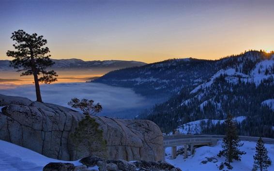 Fond d'écran Hiver, matin, route, montagnes, arbres, neige