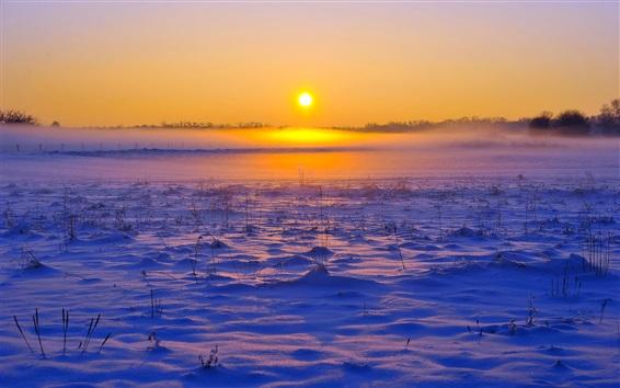 Fond d'écran Hiver, neige, herbe, coucher de soleil