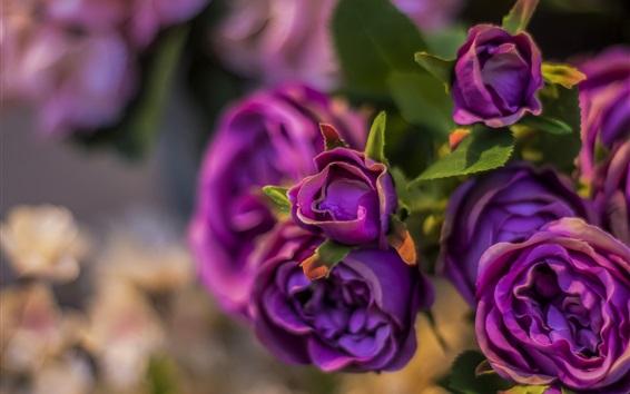 Обои Искусственные цветы, фиолетовые розы