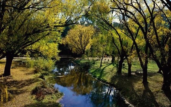 Papéis de Parede Austrália, parque, árvores, rio, ponte, sol