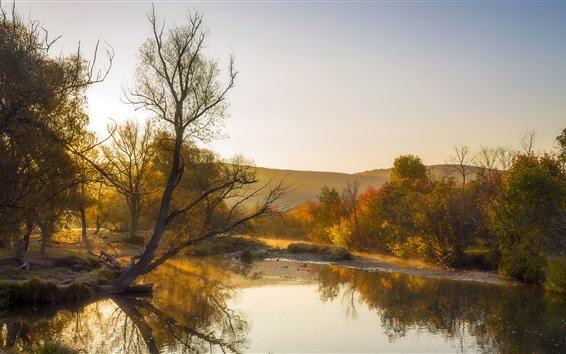 Papéis de Parede Outono, rio, árvores, estilo amarelo, nevoeiro