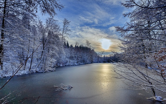 Wallpaper Baden-Wurttemberg, Germany, winter, trees, river