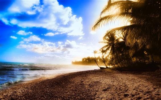 Fondos de pantalla Hermosa playa, puesta de sol, mar, costa, palmeras, nubes