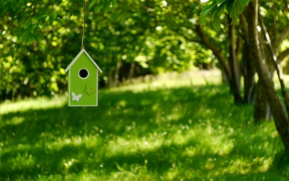 Papéis de Parede Birdhouse, árvore, grama, verde