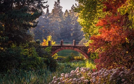 Fondos de pantalla Jardín Botánico, Berlín, Alemania, árboles, arbustos, estanque, puente, otoño
