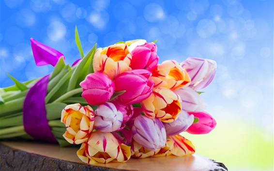 Wallpaper Bouquet tulips, colorful flowers