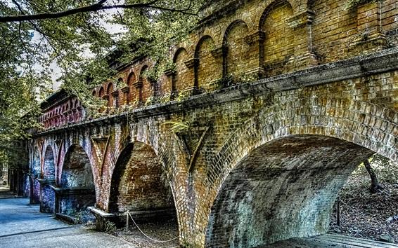 Wallpaper Bridge, arch, trees
