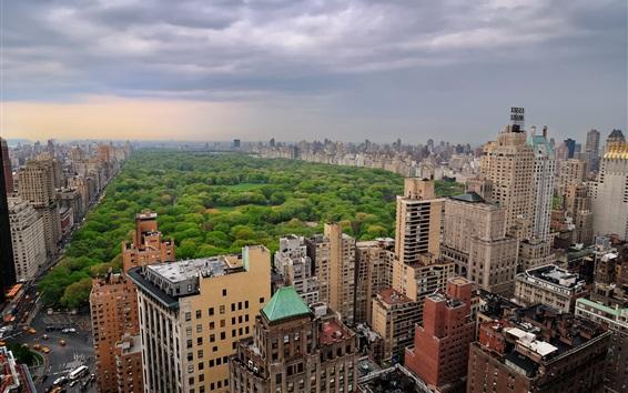 Fondos de pantalla Central Park, Nueva York, ciudad, edificios, árboles