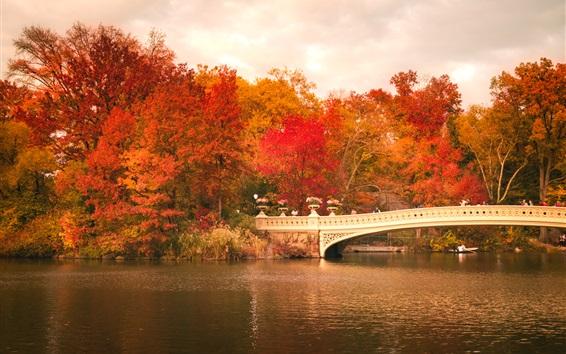 Fond d'écran Central Park, bateaux, pont, arbres, feuilles rouges, automne, USA