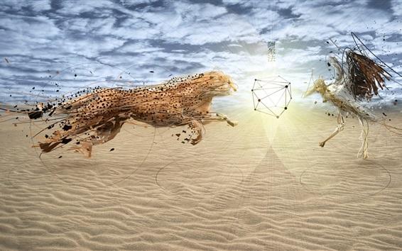 Fondos de pantalla Guepardo y pájaro, cara a cara, playa, imagen creativa