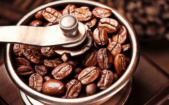 Fondos de pantalla Granos de café, granos