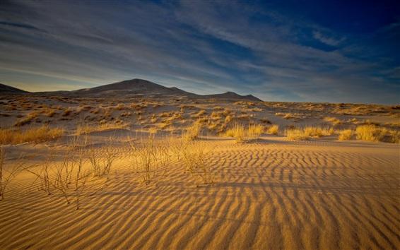 Обои Пустыня, пески, трава, облака