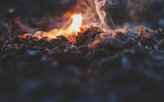 배경 화면 불, 모닥불