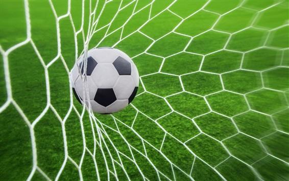 Обои Футбол забит в сетку