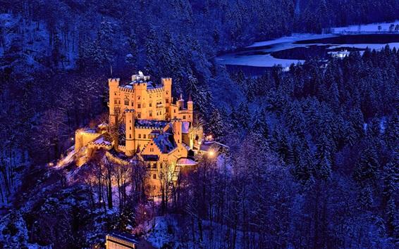 Wallpaper Germany, Bavaria, Hohenschwangau Castle , trees, winter, snow