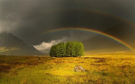 Wallpaper Gloomy and cloudy sky, grass, trees, rainbow