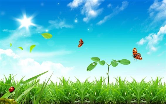 Обои Трава, растения, божья коровка, голубое небо, солнце