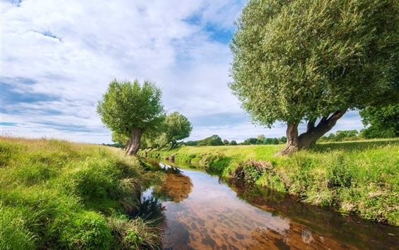 Обои Трава, река, деревья, облака, природа