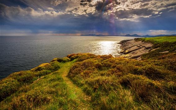 壁紙 芝生、海、海岸、太陽の光線