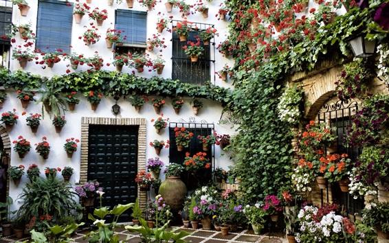 Papéis de Parede Casa, lindo jardim, flores