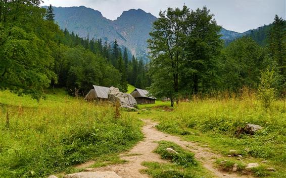Fond d'écran Cabanes, arbres, sentier, montagnes, Zakopane, Pologne