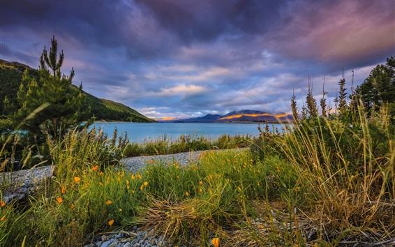 Wallpaper Lake Tekapo, New Zealand, pebbles, clouds, mountains, grass