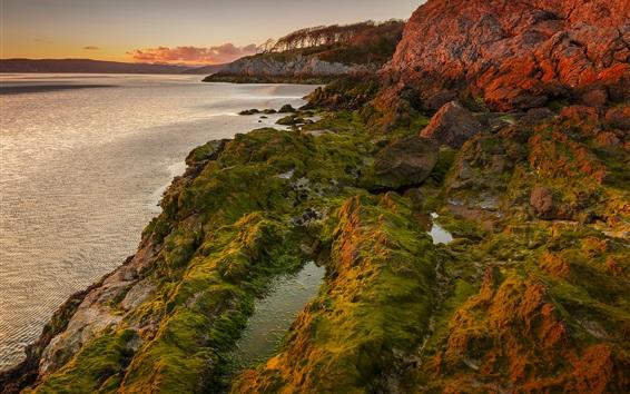壁紙 湖、夕日、藻、山、岩